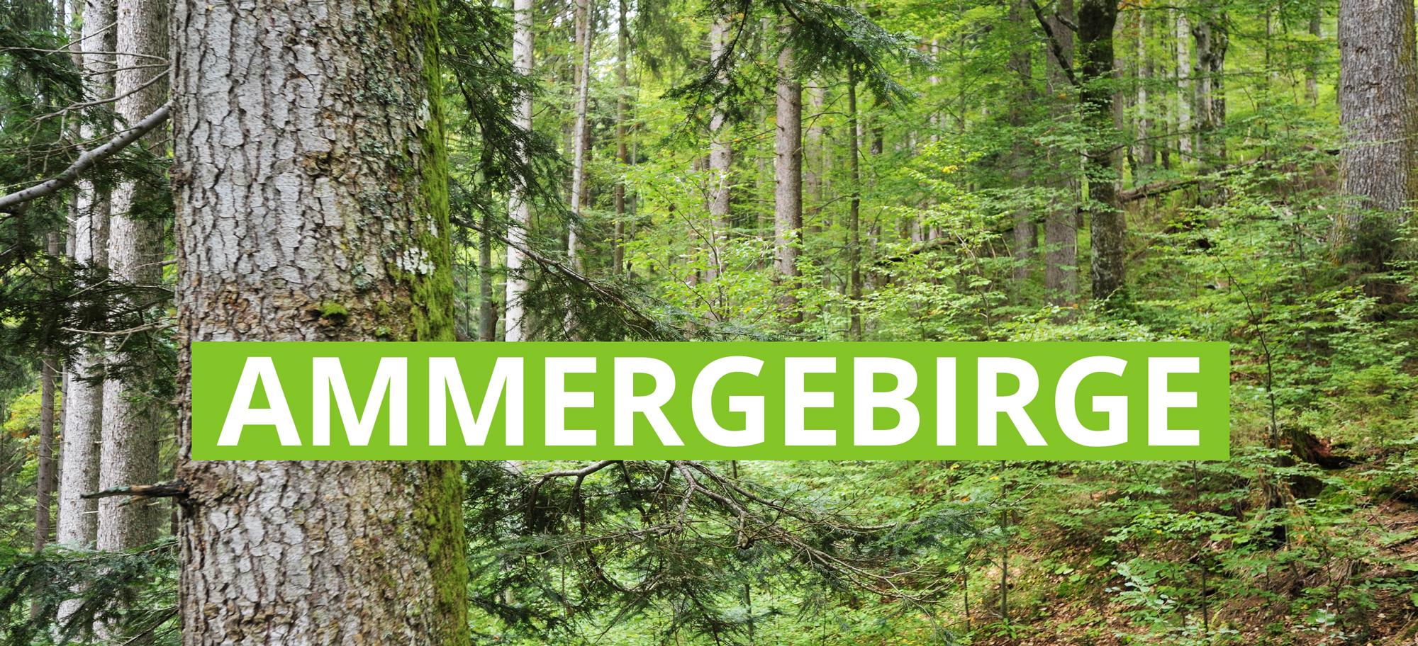 Ammergebirge
